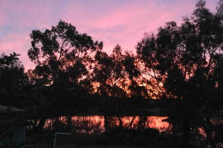 Sunset - Tinakori Animal Farm Clunes